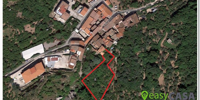 Google Maps jpg